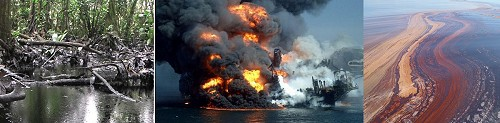 Amazonian oil contamination + BP deep water oil spill